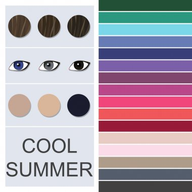 Stock vector seasonal color analysis palette for cool summer type