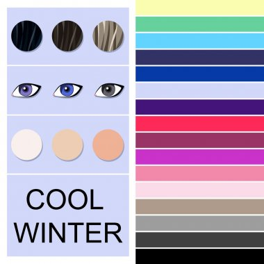Stock vector seasonal color analysis palette for cool winter type