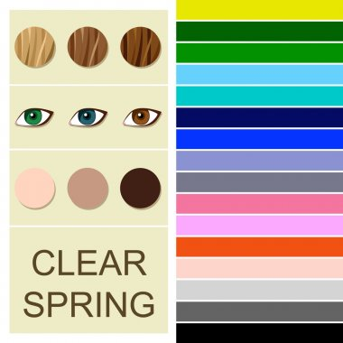 Stock vector seasonal color analysis palette for clear spring type