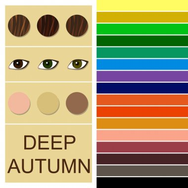 Stock vector seasonal color analysis palette for deep autumn type