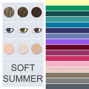 Stock vector seasonal color analysis palette for soft summer type