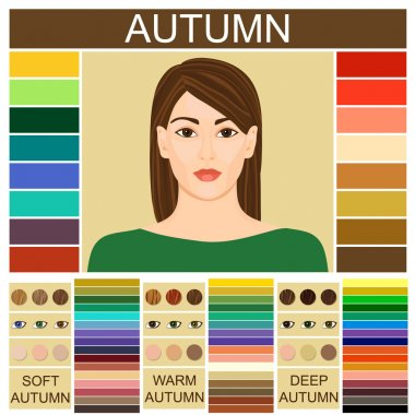 Stock vector set of three autumn types of female appearance