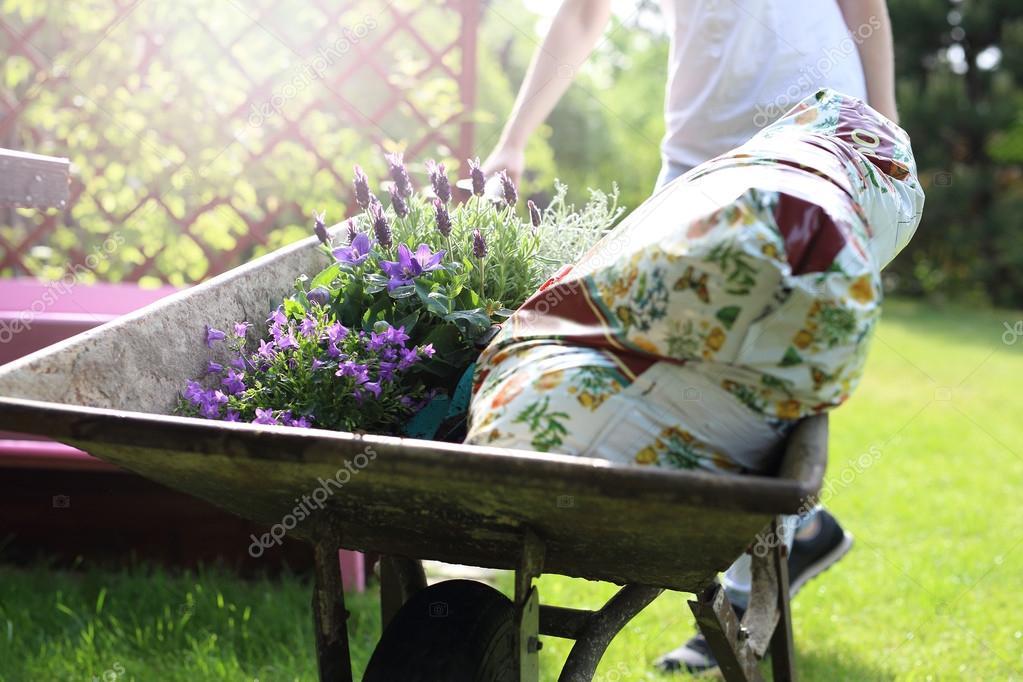 Gardening, hobby and passion.