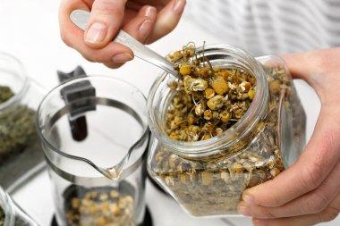 Chamomile infusion of chamomile