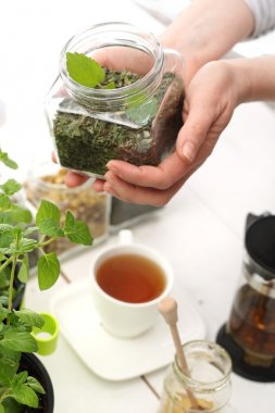 Green composition of herbs, lemon balm and mint