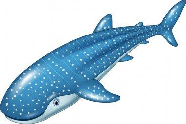 Cartoon whale shark isolated on white background