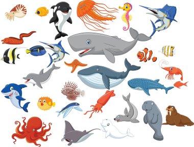 Cartoon sea animals isolated on white background