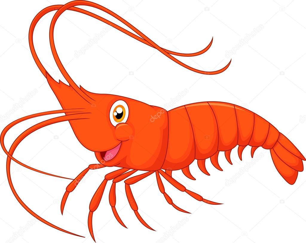 gamberetti simpatico cartone animato vettoriali stock Shrimp Images Free Cartoon Shrimp Clip Art