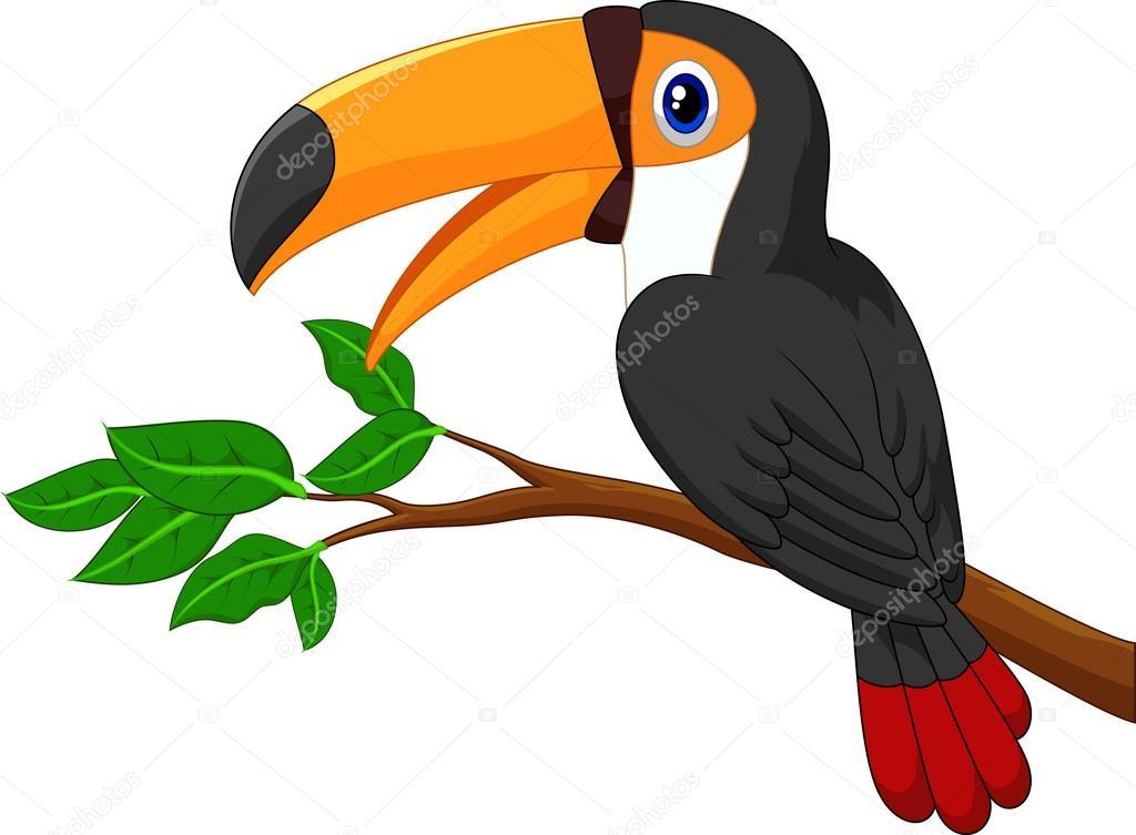 Dibujos Animados Aves De Tucán En Una Rama De árbol