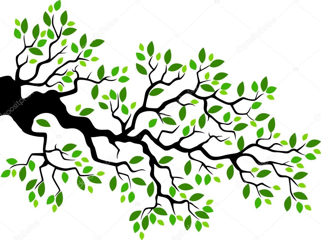 Dibujos: ramas | Dibujos animados de rama de árbol verde de la hoja ...