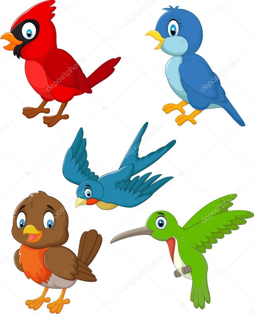 Dibujos Animados Pájaros Colección Conjunto Archivo Imágenes