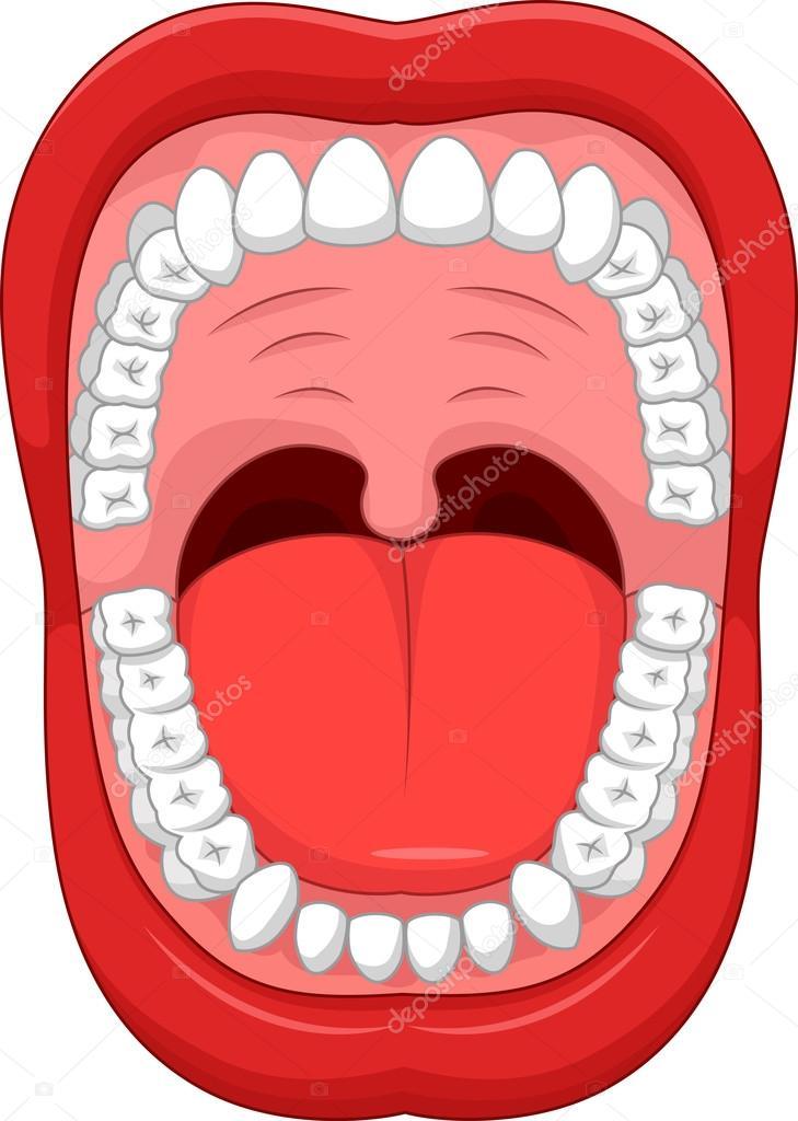 desenhos animados de boca aberta e branco dente saudável vetores