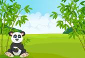 Fotografia Cartoon cute panda in the bamboo forest
