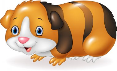 Cartoon Guinea pig isolated on white background