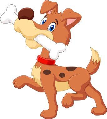 Cartoon funny dog with bone isolated on white background