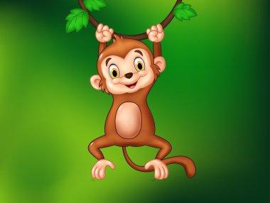 Cartoon funny monkey hanging on a vine