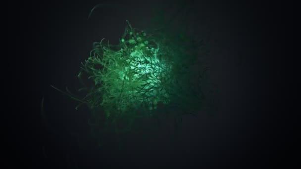 Tadpoles tails sperm shape organisms