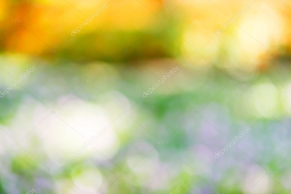 Real nature blurred background u2014 Stock Photo © smuayc #63023869
