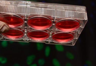 Cell technologies in biological research.