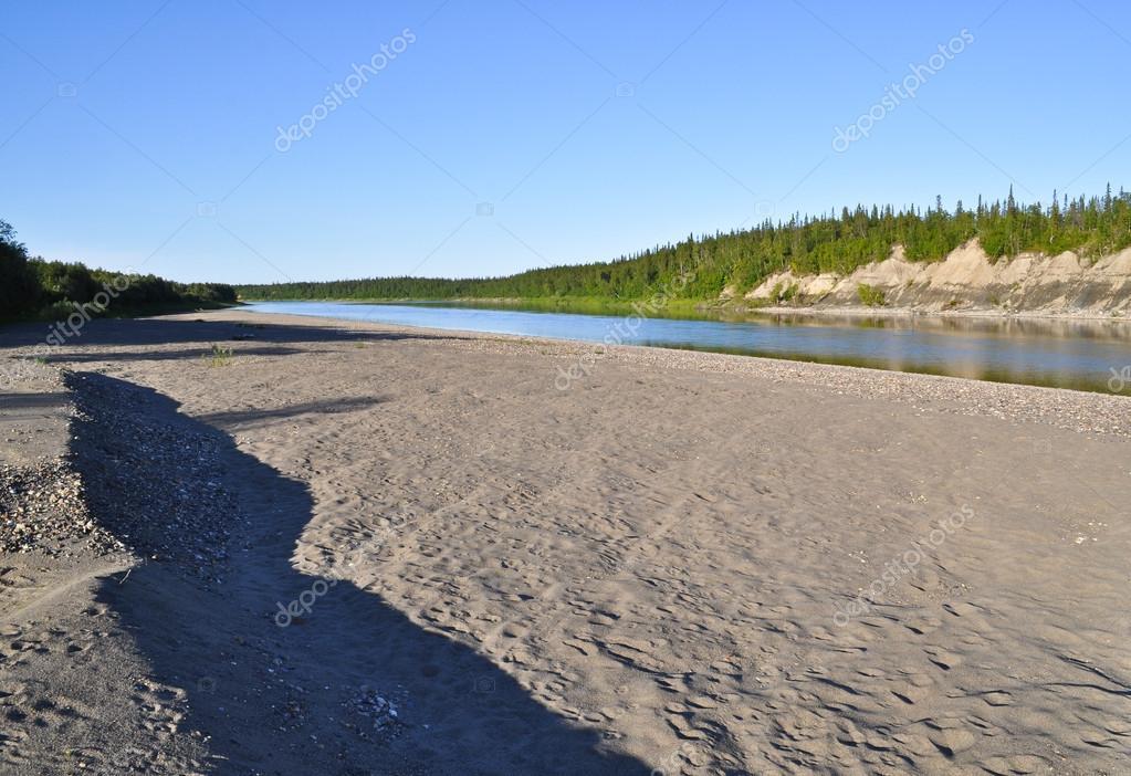 ウラル川 Lemva の砂浜海岸. — ...