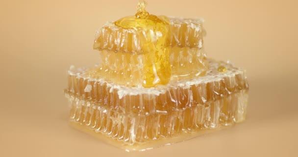 Frischer Honig fließt in die Wabe.