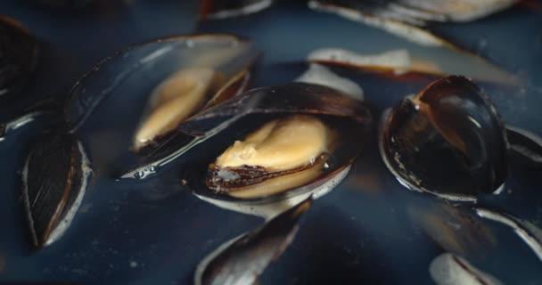 Köstliche Muscheln mit heißem Dampf zubereiten.