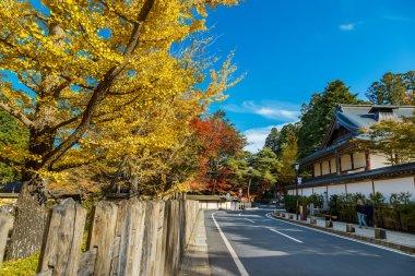 The Road to Danjo Garan Temple in Mt. Koya Area in Wakayama, Japan