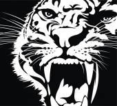 head of wild cat