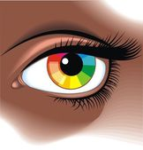 Photo eye with color pallette