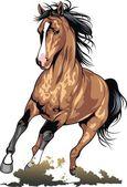 barna ló elszigetelt