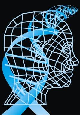 3d human head