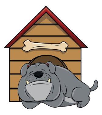 Bulldog sleeping near house on white