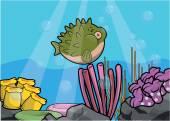 Puffer ryby podvodní scenérie