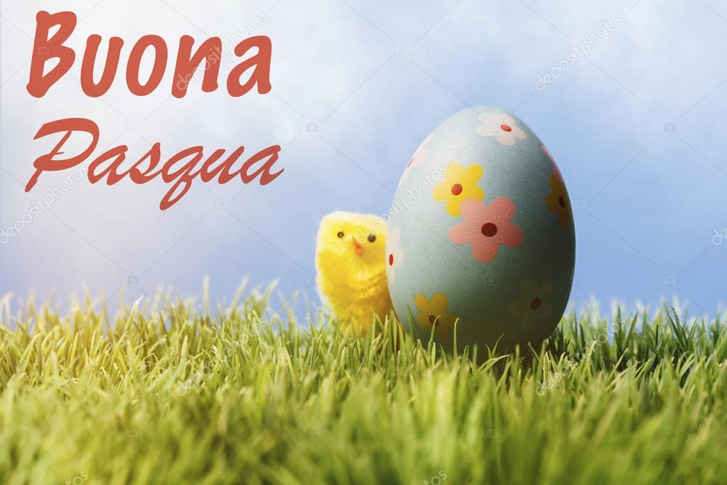 Italian easter greeting text blue easter egg and chicken stock italian greeting text wishing happy easter small yellow chick hiding behing a painted blue easter egg on grass in front of blue background photo by m4hsunfo