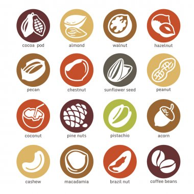 Web icon set - nuts, beans and seed