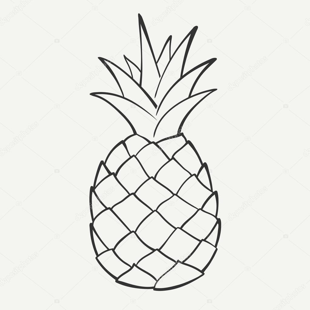 Ananas Rysunek ananas grafika wektorowa | depositphotos®