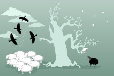 Odd bird and black sheep