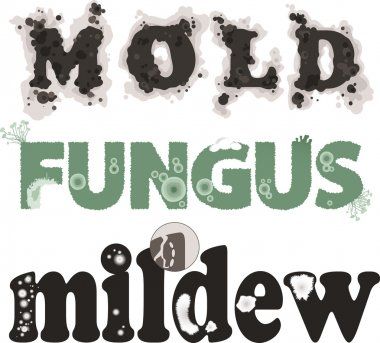 Mold, fungus and mildew