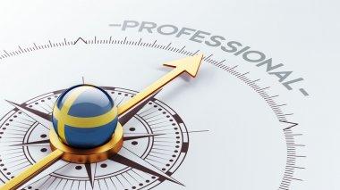 Sweden Professional Concept