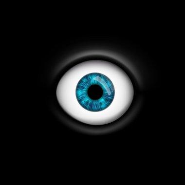 human eye isolated on black background