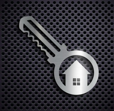Flat metallic logo key.