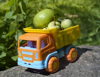 Truck With Apples