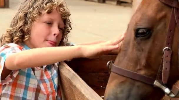 Junge streichelt Pferd