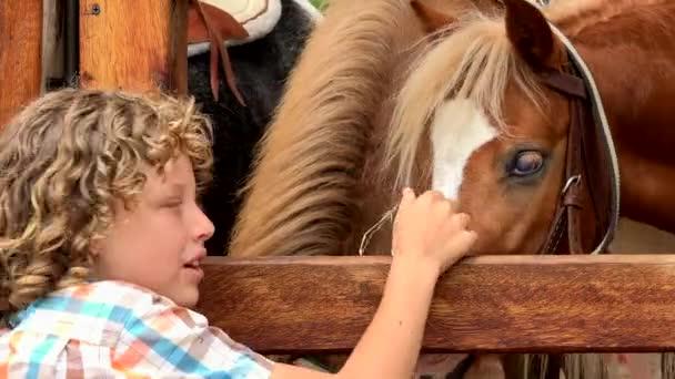 Chlapec krmení koní farma