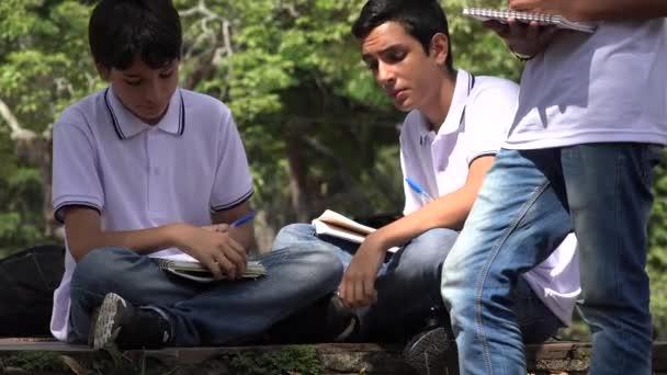 Prep School Boys Studying