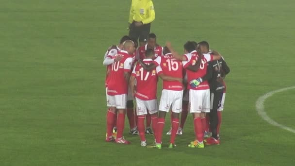 Soccer Teams, Players, Athletes