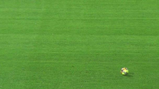 Március 14 2014 - Bogota, Kolumbia - futball kapus rugdossa a labdát