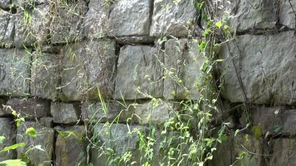 kamenné zdi, rock, struktura
