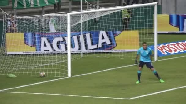Soccer Player Defending Kick