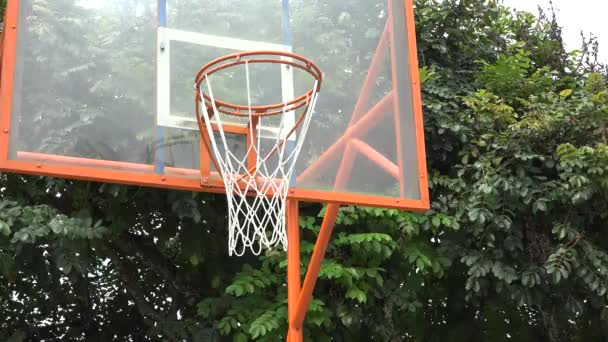 Kosárlabda Hoop, atlétika, sport